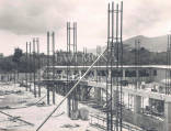 Main Library, UWI, Mona,  under construction, 1951.