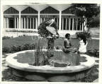 Peliduck Fountain at Mary Seacole Hall, UWI, Mona