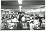 Students in laboratory at UCWI, Mona.