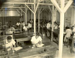 Old Physics Laboratory, UCWI, 1950