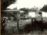 Houses for university staff, UWI, Mona, 1952.